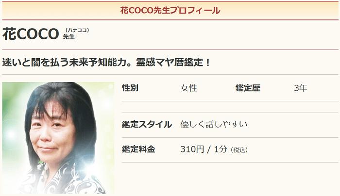 花COCO先生の写真